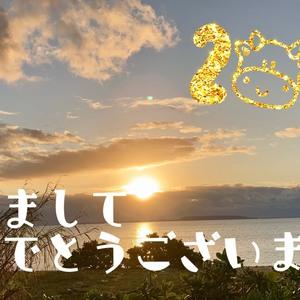 ☆1月お休みのお知らせ☆